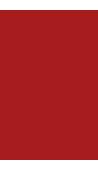 Logo Agricola Turco